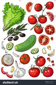 set colored vegetables fresh food lettuce stock vector 530589949