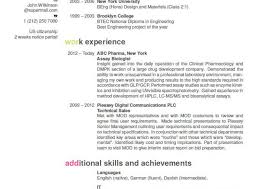 Mckinsey Resume Template Aninsaneportraitus Remarkable Resume Sample Sales Customer Service
