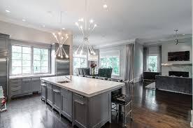 Kitchen Grey Cabinets Kitchens Grey Kitchen Cabinets With Wood Floor Grey Kitchen
