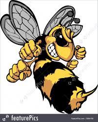 bee hornet cartoon vector image