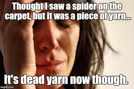 I Saw A Spider Meme - first world problems meme imgflip