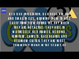 What Causes Bed Bugs To Come What Causes Bed Bugs And Where Do They Come From Youtube