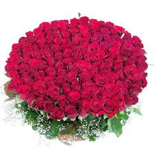 roses online home delivery of roses online in mumbai local florist for