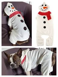 check out toys and apparel at petsmart