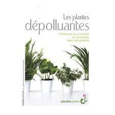 plantes d駱olluantes chambre livre plantes d intérieur dépolluantes la santé par les plantes