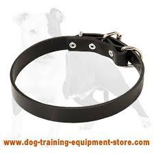 Comfortable Dog Collar Get Dog Training Collar Thin Leather Dog Collar