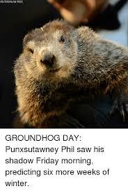 Groundhog Meme - 25 best memes about groundhog day groundhog day memes