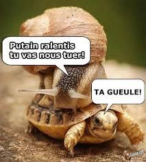 Nous Meme - site drole image humour france images memes pictures gag blagues