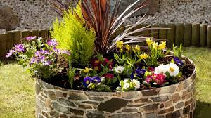 complete guidelines of rock garden plants to use maintaining