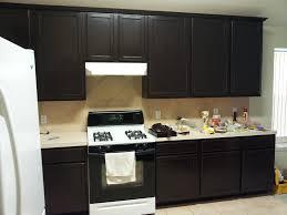 Restain Kitchen Cabinets Darker Staining Kitchen Cabinets Darker Home Design Ideas