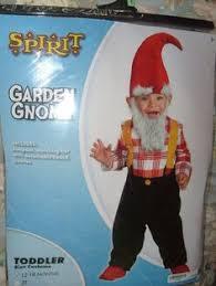 Gnome Halloween Costume Toddler Men U0027s Kung Fu Sensei Long Gray Halloween Costume Wig Beard
