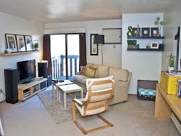 Cool College Apartment Decor Ideas Decoration Idea Luxury Gallery