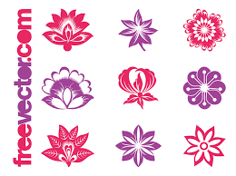 blooming flowers blooming flowers graphics set vector graphics freevector