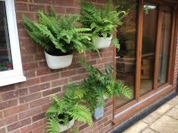wall mounted planters show me your hanging baskets gardening forum gardenersworld