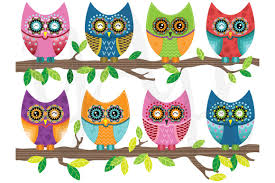 colorful cute owl illustrations creative market