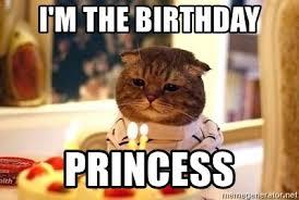 Birthday Princess Meme - i m the birthday princess birthday cat meme generator