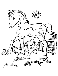 horse coloring pages with butterfly coloringstar