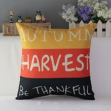 thanksgiving pillows and pillow covers starting at 10 00