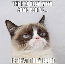 Grumpy Cat Meme Happy - list of synonyms and antonyms of the word mad kitty meme