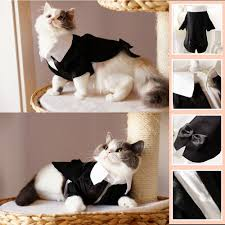 Halloween Costumes Cats Wear Amazon U0027pet Handsome Prince Cat Bridegroom Wedding Tuxedo