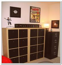 Comic Book Storage Cabinet Comic Book Storage Cabinet Best Storage Ideas Website Book Storage