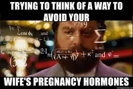 Pregnancy Hormones Meme - trying to think of a way to avoid your wife s pregnancy hormones