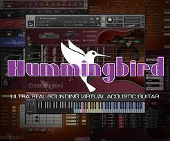 tutorial virtual guitar prominy hummingbird
