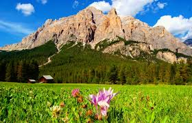 Beautiful Mountain Houses mountains greenery grass house mountain beautiful cottages meadow