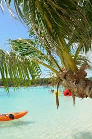 best 25 bahamas island ideas on pinterest harbor island bahamas