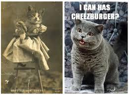 Happy Cat Meme - explainer what are memes sean rintel
