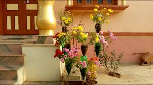 Flowers Home Decoration Chandramallika Planting In Hanging Bottles For Home Decoration