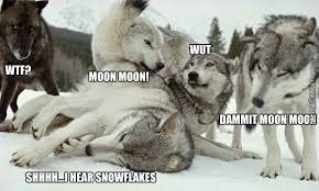 Moon Moon Memes - goddammit moon moon by dashielrparr91 meme center