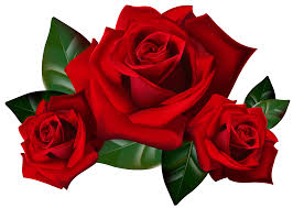 red flower clipart valentine rose pencil and in color red flower