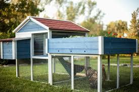 Chicken Coop Kit Advantek The Rooftop Garden Chicken Coop U0026 Reviews Wayfair