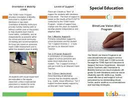 Blind Support Services Program