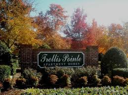 trellis pointe apartments holly springs nc walk score