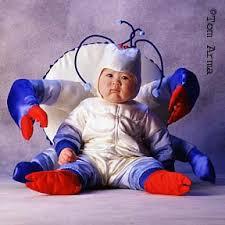 Crab Halloween Costume Tom Arma Water Babies Costumes Babies Infants U0026 Toddlers