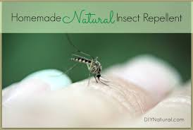 Backyard Fly Repellent Homemade Mosquito Repellent Keep Mosquitos U0026 Bugs Away Naturally