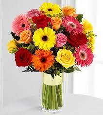 gerbera bouquet yellow daisies pink daisies daisies orange daisies san