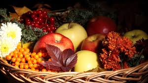 fruits flowers fruits flowers baskets fruits food apples nature picture