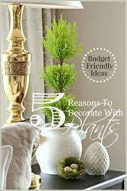 117 best pots indoor and out images on pinterest indoor