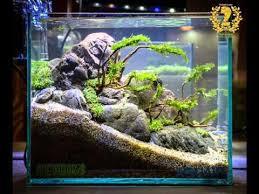 Aga Aquascaping Contest Aquascape Contest 2016 Nano Tank Youtube
