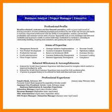 credit analyst resume resume templates aml analyst example budget