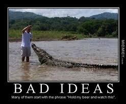 Crocodile Meme - feeding a crocodile by hand memey com