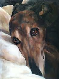 fritzen greyhounds acrylic on canvas painting by lucilla bollati