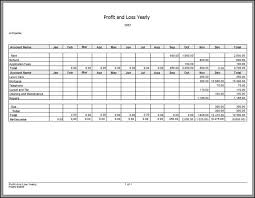 Sle Profit And Loss Sheet by Sle Income Statement Template Agrahotel Co