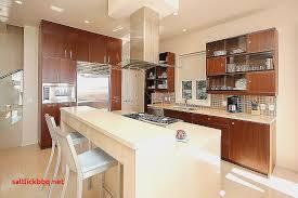 porte vitree cuisine meuble encastrable cuisine best of emejing meuble haut cuisine porte