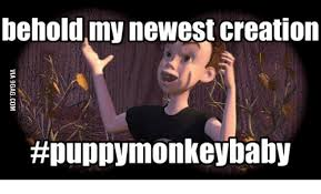 Baby Monkey Meme - behold my newest creation puppy monkey baby creation meme on me me
