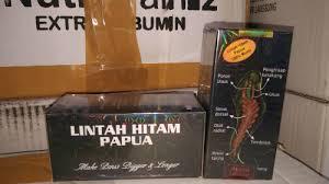 Minyak Lintah Papua Hitam minyak lintah hitam papua asli ori original murah jual harga grosir