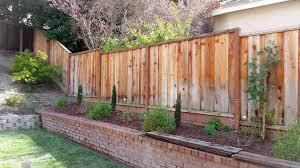 design tips for a dog friendly lawn u0026 garden